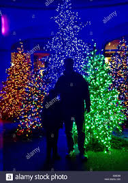 Christmas Lights In Pittsburgh Pa Man And Boy In Front Of Christmas Trees Taken At Pittsburgh