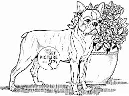 Small Picture Cosy Dog Animal Coloring Pages How To Color Dog Coloring Page