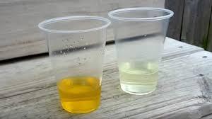 5 best homemade pregnancy tests with bleach sugar vinegar baking soda toothpast