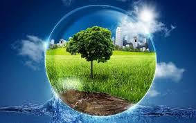 год экологии в России мероприятия мнение экспертов  программа охраны экологии