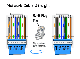 cat 5 wiring diagram a or b cat wiring diagrams online cat5 wiring diagram