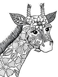 Animal Coloring Pages Adault Book Animals