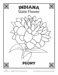 8d3c05ba070b98d256a1658e201517a9 indiana state flower flower, indiana and worksheets on states worksheets