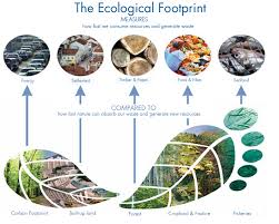 ecological footprint global footprint network ecological footprint