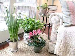 indoor gardening supplies. Essential Indoor Garden Supplies Picture Gardening F