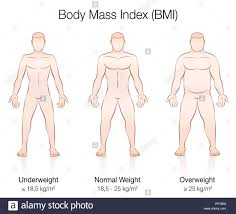 Bmi Underweight Overweight Chart Body Mass Index Bmi Underweight Normal Weight And