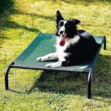 raised outdoor dog bed diy