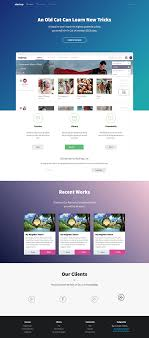 Elite Startup Landing Page Template On Wacom Gallery