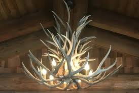 antlers lighting chandelier image 0 antler chandelier lamp shades