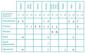 Distinctive Features Chart 31 Disclosed Phonetic Placement Chart