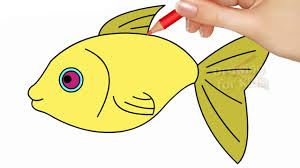 fish drawing for colouring. Contemporary Drawing How To Draw Fish Step By And Coloring Pages For Kids  Learning Videos  Colors Drawing Teching In For Colouring YouTube