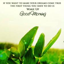 Good Morning Inspirational Quotes Enchanting 48 Motivational Good Morning Wishes