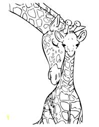 Coloring Page Of A Zebra Zebras Coloring Pages Free Coloring Pages