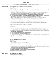 Product Management Resume Global Product Management Resume Samples Velvet Jobs 33