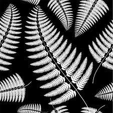 Sprig Of White Fern On A Black Background Vector Summer