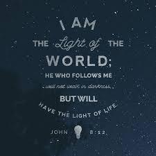 Light Of The World Verse Niv Verse Of The Day John 8 12 The Bible App Bible Com
