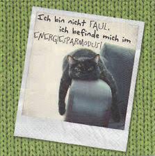 3 Servietten Mit Sprüche Schatz Männer Frauen Katzen Liebe
