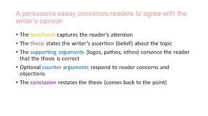 persuasive essay hooks examples good for essays   the persuasive essay writing is essays examples sl persuasive writing essays essay large