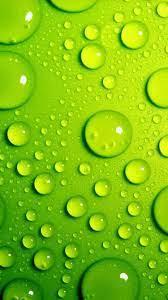 Green iPhone Wallpaper 12