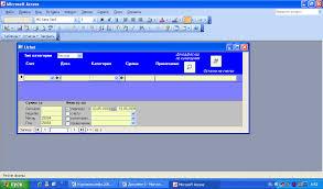 Информационные системы Домашняя бухгалтерия Таким образом форма должна иметь вид
