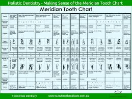 Meridian Tooth Chart Tooth Chart Remedies For Tooth Ache