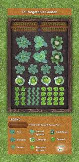 stumped as to how you should arrange your fall garden then check this plan out it is easy to read and includes all of your necessary fall vegetables