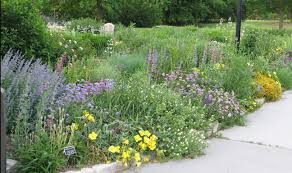 how to plan a garden. Appealing Seven Steps To Planning Your Native Landscape Dyck Arboretum Image For How Plan Garden Popular A R