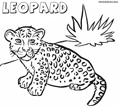 Small Picture Leopard coloring pages Coloring pages to download and print