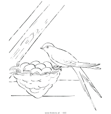 Beautiful Eastern Bluebird Coloring Page For Mockingbird 76 Coloring