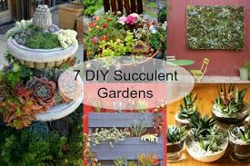 Small Picture Strikingly Idea How To Make A Succulent Garden Fine Design Make