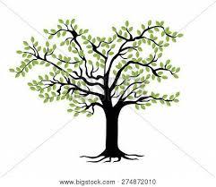 Family Tree Tree Template Family Tree Template Vector Photo Free Trial Bigstock