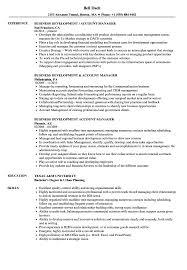 Business Development Account Manager Resume Samples Velvet Jobs