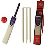 BeachBackyard Cricket Set  Other Sports U0026 Fitness  Gumtree Backyard Cricket Set