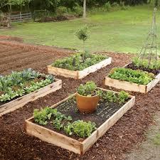 Kitchen Garden Cookbook Kitchen Garden Cookbook How To Grow Your Own Food Cooking Light
