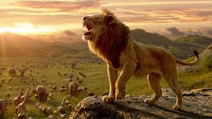 Lion Wallpaper Hd 1080p posted by Sarah ...