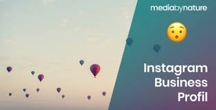 Instagram Business Profil Unser Guide Media By Nature