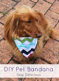 diy pet bandana tutorial vitapet treats sew delicious