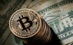 From this we can say that bitcoin is dominating the market by. What Makes The Bitcoin Dominance Important Btcbit Net