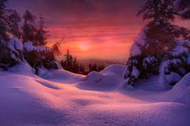 february winter backgrounds. Delighful February Setting Sun In Winter And February Backgrounds T