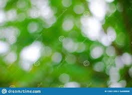 Free Green Background Abstract Green Background With Bokeh Stock Image Image Of