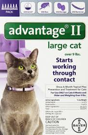 as amazon s 1 best seller in cat flea drops you can count on bayer advane ii flea control treatment for cats to effectively kill fleas eggs
