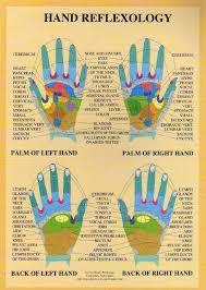 Hand Reflexology A4 Chart