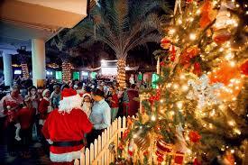 Christmas Lights Mcgettigans To Throw Christmas Tree Lighting Parties