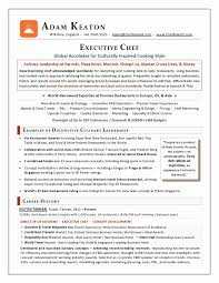 Chef Resume Sample Pdf Fresh Executive Resume Writer Cto2 Cover