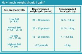 Pregnancy Weight Gain Chart Overweight Pin On Womens Health