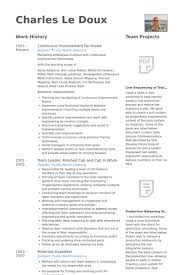 Continuous Improvement Facilitator Resume samples