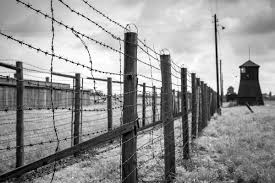 barbed wire fence holocaust. Exellent Holocaust A Closeup Blackandwhite Image Of Two Rows Barbed Wire To Barbed Wire Fence Holocaust E
