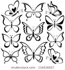 drawing butterfly pictures. Perfect Drawing Various Butterflies Black Contours On White Background Vector Inside Drawing Butterfly Pictures