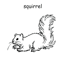 Squirrel Coloring Page Free Printable Pages Click The Artigianelli