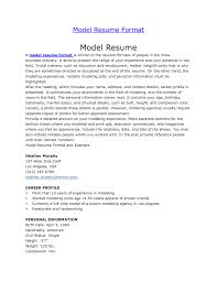 Examples Of Resumes Resume Example A For Job Format 85 Amusing
